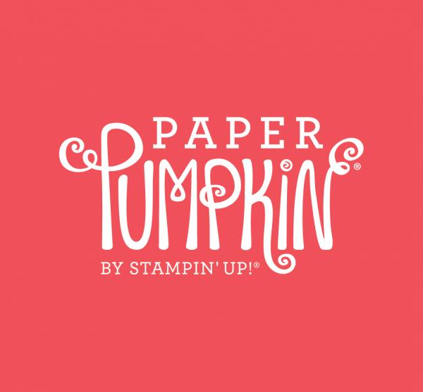 20 Alternatives - Paper Pumpkin December 2020 - Beary Comforting   Tracy Marie Lewis   www.stuffnthingz.com