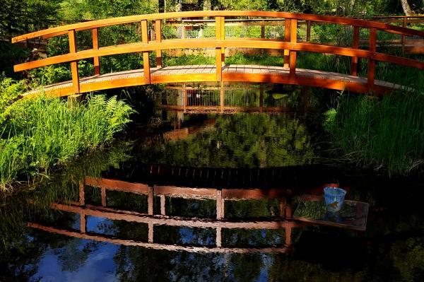 Bonhoeffer Botanical Gardens | Tracy Marie Lewis | www.stuffnthingz.com