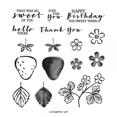 Sweet Strawberry Photopolymer Stamp Set by Stampin' Up!