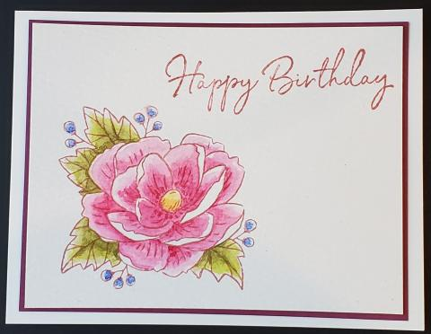 Paper Pumpkin Horizontal Watercolor Birthday Card | Tracy Marie Lewis | www.stuffnthingz.com