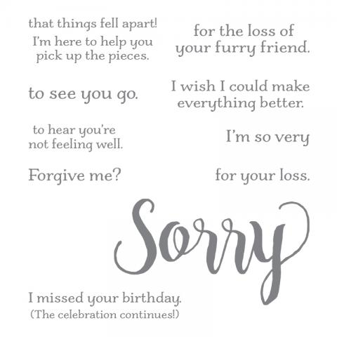 Sorry For Everything | Tracy Marie Lewis | www.stuffnthingz.com