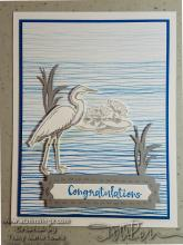 New Catalog Sneak Peek - Heron Congratulations Card | Tracy Marie Lewis | www.stuffnthingz.com