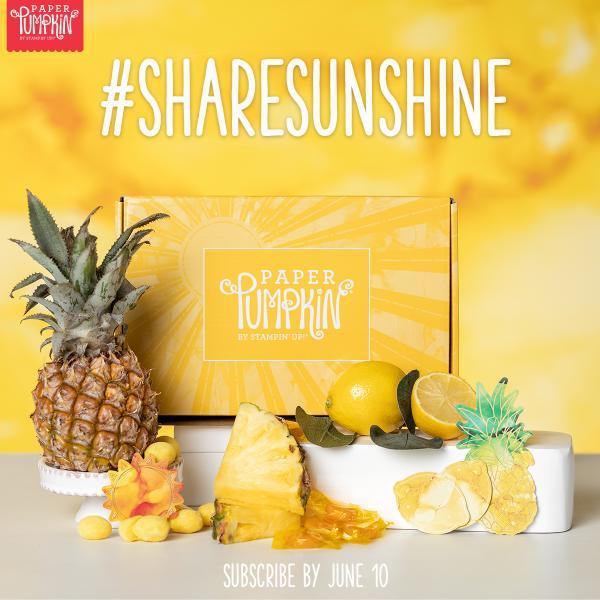 June 2020 Paper Pumpkin - Box Of Sunshine | Tracy Marie Lewis | www.stuffnthingz.com
